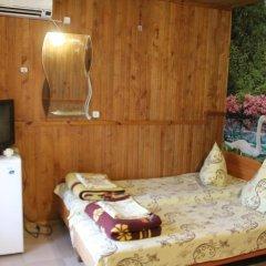 Гостевой Дом Елена Номер Комфорт с различными типами кроватей фото 2