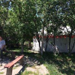 Отель Turkestan Yurt Camp Кыргызстан, Каракол - отзывы, цены и фото номеров - забронировать отель Turkestan Yurt Camp онлайн фото 13