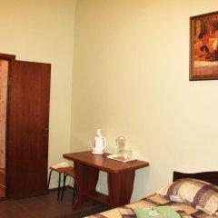 Гостиница Сафьян 3* Стандартный номер с различными типами кроватей фото 7