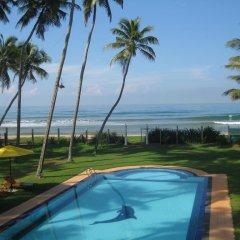 Отель Palm Beach Villa Шри-Ланка, Ваддува - отзывы, цены и фото номеров - забронировать отель Palm Beach Villa онлайн бассейн
