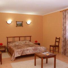 Гостиница Альпийский двор комната для гостей фото 3