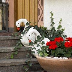 Отель Residence Königsrainer Горнолыжный курорт Ортлер фото 7