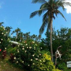 Отель Gecko Lodge Fiji Савусаву фото 6