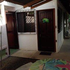 Отель Cabinas Tropicales Puerto Jimenez 3* Стандартный номер фото 5