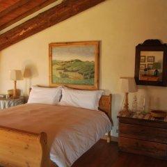 Отель Il Castello di Tassara Сан-Мартино-Сиккомарио комната для гостей фото 4