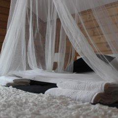 Crocus Art Hotel Стандартный номер с различными типами кроватей фото 4