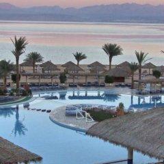 Отель Aquis Taba Paradise Resort Египет, Таба - отзывы, цены и фото номеров - забронировать отель Aquis Taba Paradise Resort онлайн бассейн фото 3