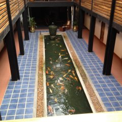Отель The Sovereign сауна