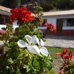 Отель Casa Inti Lodge фото 6