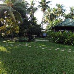 Отель Paradise Garden фото 8