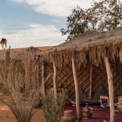 Отель Ali & Sara's Desert Palace Марокко, Мерзуга - отзывы, цены и фото номеров - забронировать отель Ali & Sara's Desert Palace онлайн фото 4
