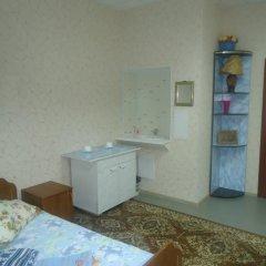 Гостиница Sysola, gostinitsa, IP Rokhlina N. P. 2* Стандартный номер с различными типами кроватей (общая ванная комната) фото 2