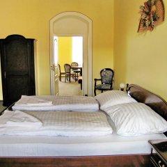 Отель Penzion U Salzmannu 3* Апартаменты