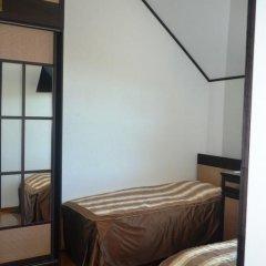 Гостиница Гостиный двор Алтай Стандартный номер с 2 отдельными кроватями фото 5