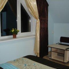 Гостевой дом Три клена Стандартный номер с различными типами кроватей фото 3