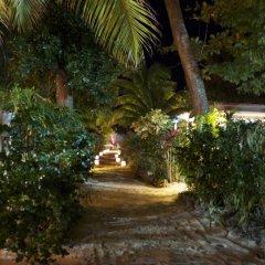 Отель Whistling Bird Resort фото 2