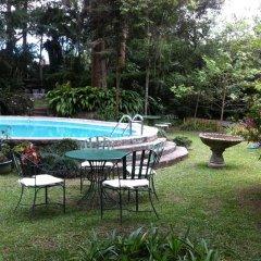 Отель Casa Xochicalco Гондурас, Тегусигальпа - отзывы, цены и фото номеров - забронировать отель Casa Xochicalco онлайн бассейн фото 2