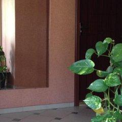 Отель Guesthouse Sonata Болгария, Кюстендил - отзывы, цены и фото номеров - забронировать отель Guesthouse Sonata онлайн интерьер отеля фото 3