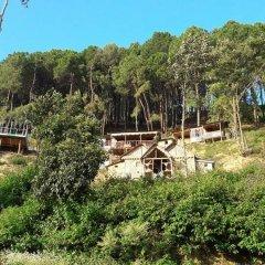 Отель Kathmandu Eco Hostel Непал, Катманду - отзывы, цены и фото номеров - забронировать отель Kathmandu Eco Hostel онлайн