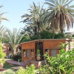 Отель Ecolodge Bab El Oued Maroc Oasis Полулюкс с различными типами кроватей фото 5