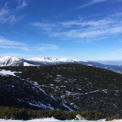 Отель Ski Chalet Borovets