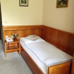 Апартаменты Helenental Pension & Apartments Стандартный номер с различными типами кроватей фото 4