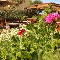 Отель Rastoni Греция, Эгина - отзывы, цены и фото номеров - забронировать отель Rastoni онлайн фото 6