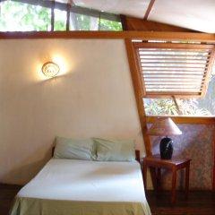 Отель Whistling Bird Resort комната для гостей фото 3