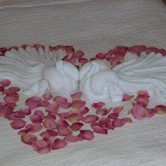Hotel Amalka 3* Улучшенный номер фото 3
