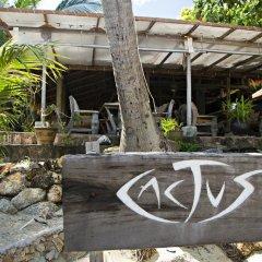 Отель Cactus Bungalow Самуи