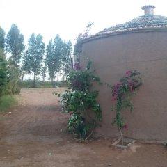 Отель Azultreck House Марокко, Загора - отзывы, цены и фото номеров - забронировать отель Azultreck House онлайн парковка