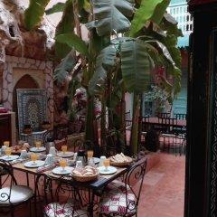 Отель Dar M'chicha питание фото 2