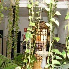 Отель Pensión Azahar фото 5