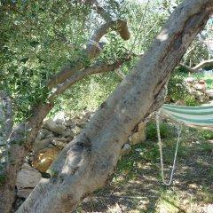 Апартаменты Nature Apartment in Split бассейн