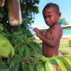 Отель Robinson Crusoe Island Фиджи, Вити-Леву - отзывы, цены и фото номеров - забронировать отель Robinson Crusoe Island онлайн фото 5