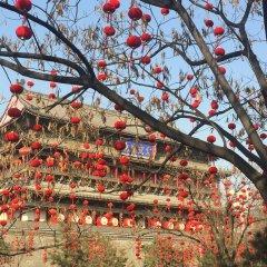 Отель Bell Tower Hotel Xian Китай, Сиань - отзывы, цены и фото номеров - забронировать отель Bell Tower Hotel Xian онлайн спортивное сооружение
