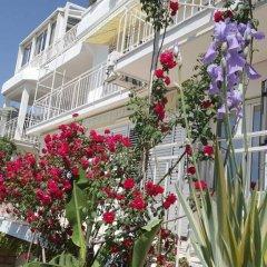 Отель Sun Rose Apartments Черногория, Свети-Стефан - отзывы, цены и фото номеров - забронировать отель Sun Rose Apartments онлайн фото 15