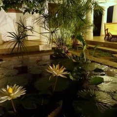Отель French Lotus Unawatuna Guest House Унаватуна фото 3
