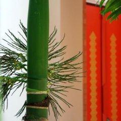 Отель Suuko Wellness & Spa Resort фото 2