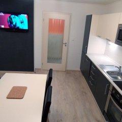 Апартаменты Apartments Verona Karlovy Vary Апартаменты с различными типами кроватей фото 10