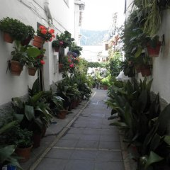 Hotel Juan Francisco фото 3