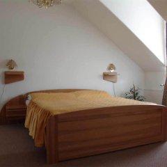 Отель Elwa Spa S.r.o. 3* Стандартный номер с различными типами кроватей фото 2