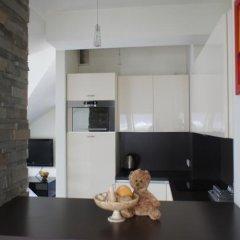 Отель Apartamenty Stara Polana Закопане интерьер отеля фото 2