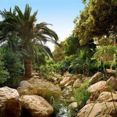 Отель Movenpick Resort & Spa Dead Sea фото 5