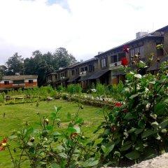 Отель Himalayan Deurali Resort Непал, Лехнат - отзывы, цены и фото номеров - забронировать отель Himalayan Deurali Resort онлайн фото 13