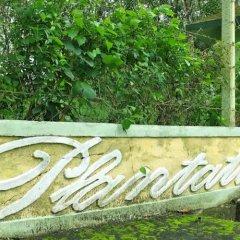 Отель Plantation Villa Ayurveda Yoga Resort фото 12
