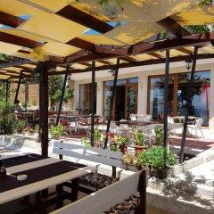Отель Guest House Ianis Paradise фото 5