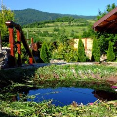 Гостиница Гостинично-оздоровительный комплекс Живая вода фото 4