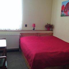 Отель Pension Platan 3* Стандартный номер с двуспальной кроватью