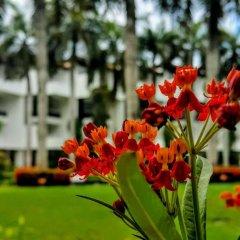 Отель Lanka Princess All Inclusive Hotel Шри-Ланка, Берувела - отзывы, цены и фото номеров - забронировать отель Lanka Princess All Inclusive Hotel онлайн фото 4
